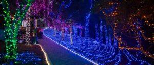 light show cambria